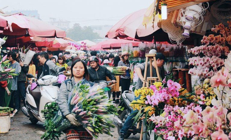 Khám phá 3 nguồn hàng hoa tươi giúp bạn kinh doanh hiệu quả