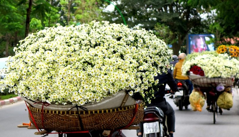 Kinh nghiệm tìm kiếm nguồn hàng hoa tươi từ chợ đầu mối
