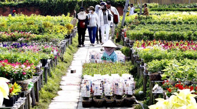 Tìm nguồn hàng hoa tươi chất lượng phục vụ kinh doanh hiệu quả
