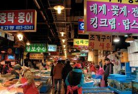 Cách lấy hàng Hàn Quốc và lấy hàng Hàn Quốc ở đâu để kinh doanh