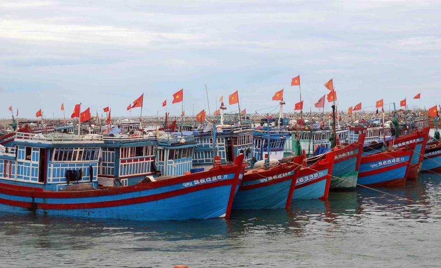 Kinh nghiệm kinh doanh hải sản online hiệu quả nhất
