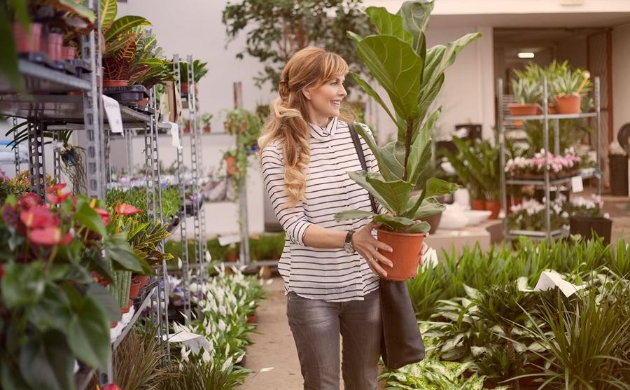 Kinh nghiệm mở cửa hàng kinh doanh cây cảnh hiệu quả nhất